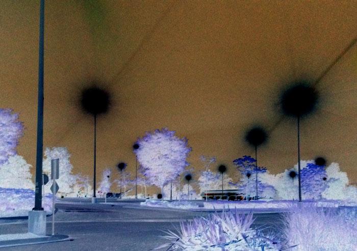 Suburban lights